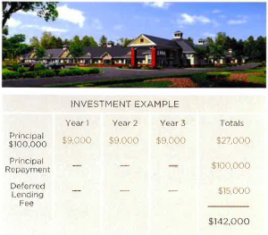 - investment example